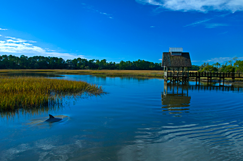 Insight into the world of for Kiawah island fishing
