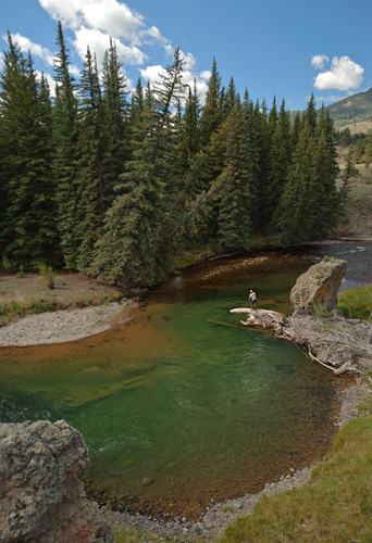 Your insight in to the world for Gunnison river fishing