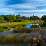 Par 3 third hole on the River Course, Kiawah Island highlighted by blooming sweetgrass