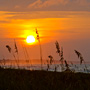 Sunrise through the sea oats on Kiawah Island beach